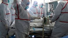 TOPSHOT-CHINA-HEALTH-BIRD-FLU-H7N9