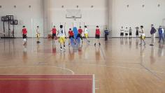 basket_conade