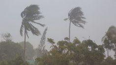 frente-frio-40-traera-lluvia-y-vientos-intensos-a-mexico-236281-1