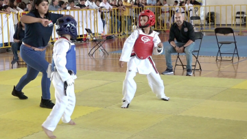 Preparan Campeonato Poomsae Virtual De TKD