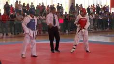 Se Llevará A Cabo El 28 Y 29 De Noviembre La Copa Tigre SLP 2020 De Taekwondo